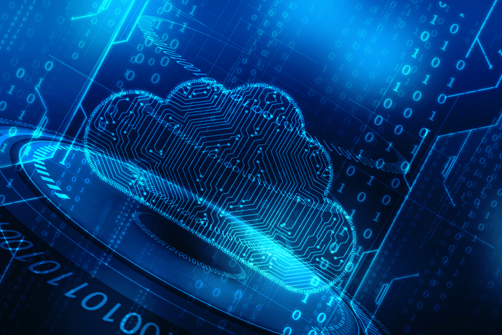 Should You Pay for Insured Privacy in the Cloud?